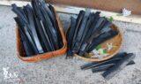 長條竹炭片2