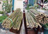 農用3尺細竹竿13